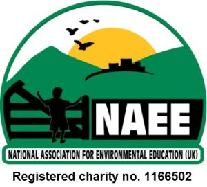 New_NAEE_charity_logo